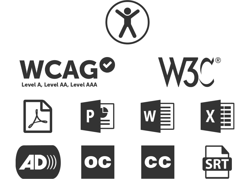 An image comp showing the Universal Access icon, and logos for WCAG, W3C, Adobe PDF, Microsoft Publisher, Word and Excel, Audio Described video, Open Captioned video, Closed Captions video, and SRT files